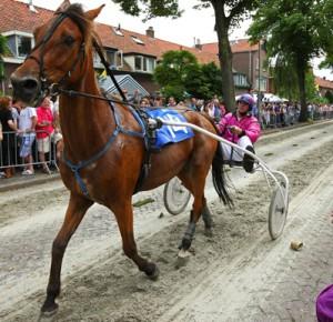 20110804_paarden_02-725