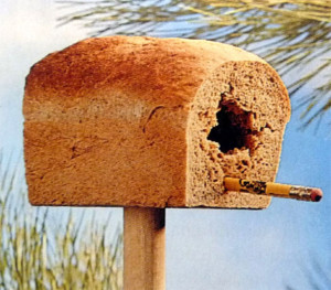 Eetbaar-vogelhuisje.1360436454-van-Jaazeetie
